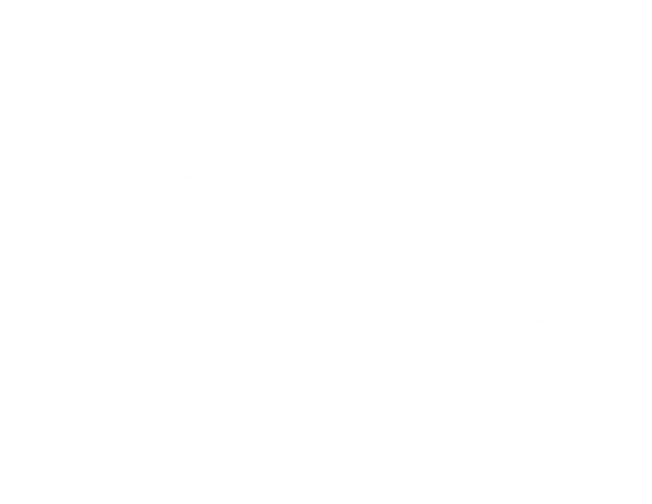 Jessica Martinez Photography LLC